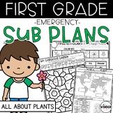 Plants Emergency First Grade Sub Plans April