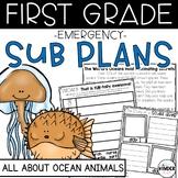 Ocean Animals First Grade Emergency June Sub Plans