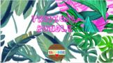 First Grade Classroom Kit Bundle – Tropical