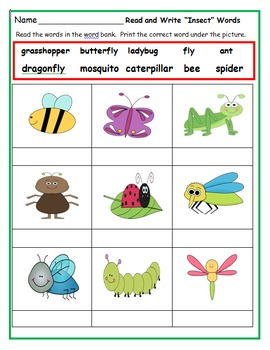 First Grade Common Core Activities: May