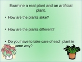 First Grade Discovery Science Power Point Science - What Do Living Things Need