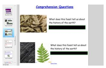 First Grade Engage NY ELA Domain 7 The History of the Earth Lesson 7