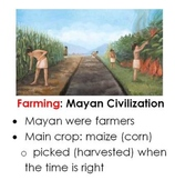 First Grade Engage NY ELA Early American Civilizations Domain 5 Posters