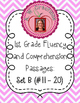 First Grade Fluency and Comprehension Passages Set B (Pass