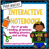 Cause and Effect, Possessive Pronouns Interactive Notebook