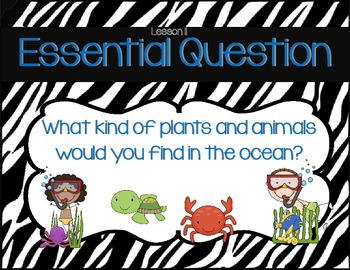 First Grade Journeys Common Core Essential Questions Zebra