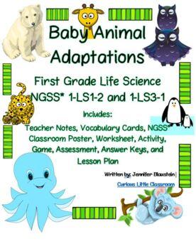 First Grade Life Science- Baby Animal Adaptations