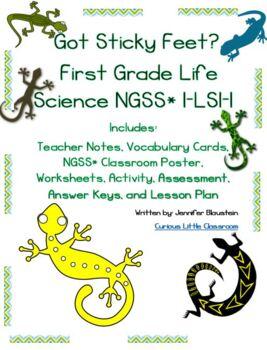 First Grade Life Science- Got Sticky Feet?