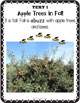 Close Reading: APPLE TREES AND BEES