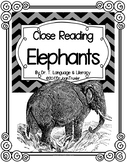 Close Reading: ELEPHANTS