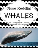 Close Reading: WHALES