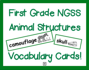 First Grade NGSS Animal Structures Vocabulary Cards