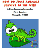 First Grade NGSS Lesson How Do Some Animals Survive in the Wild?