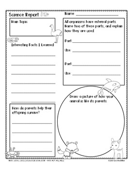 STEM: 1st Grade NGSS Printable with CCSS Report of Information: Animals