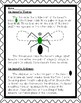 First Grade Literacy: INSECTS