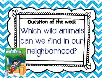 First Grade Reading Street Essential questions