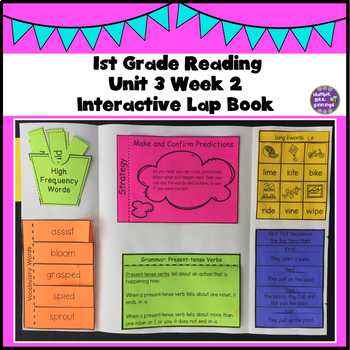 First Grade Reading Unit 3 Week 2