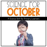 First Grade Science for October: Forms of Energy, Spiders,