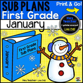 First Grade Sub Plans [January-Winter-New Year]