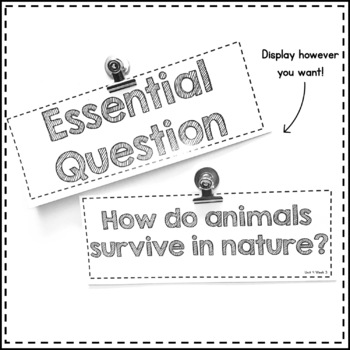 First Grade Wonders Essential Questions