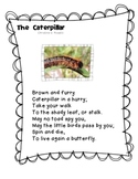 """First Language Lessons """"The Caterpillar"""" Poetry Notebook"""