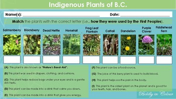 First Peoples Indigenous Plants Scavenger Hunt and Matching Activity