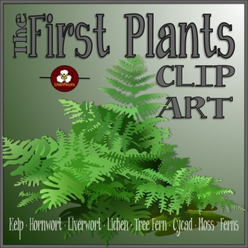 Realistic Plants Clip Art - The First Plants