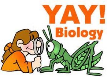 First Week of Biology/ Scientific Method