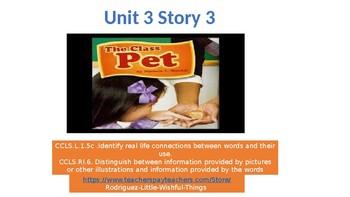 """First grade Unit 3 Story 3 """"Class Pet """""""