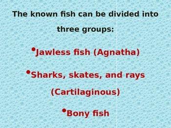 Fish Powerpoint