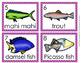 Fish 2 Write the Room Activity