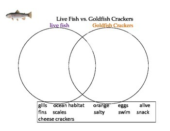 Fish Activity- Compare and Contrast