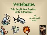 Fish, Amphibians, Reptiles, Birds, and Mammals