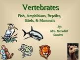 Fish, Amphibians, Reptiles, Birds, and Mammals