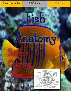 Fish Anatomy Craft