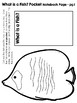 Fish - Animal Classifications Pack - Posters & Notebook pages