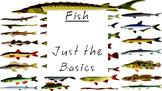 Fish Basics PowerPoint