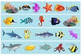 Fish Borders