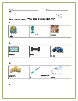 Fish Characteristics and needs
