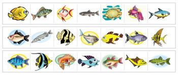 Fish Cutting Strips