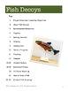 Fish Decoys: American Folk Art Lesson for Grades 4-7