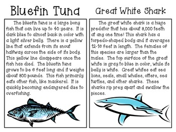 Fish Guts! ~ A Hands-On Science Activity on Fish and Food Chains