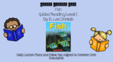 Fish (Level E) Guided Reading Lesson Plan