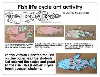 Fish life cycle art activity word wall posters and for Fish life cycle
