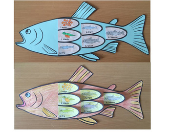 Fish Life Cycle Art Activity, word wall, posters and printable books