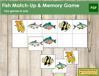 Fish Match-Up and Memory
