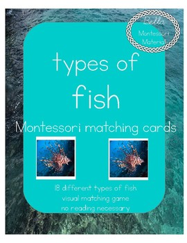 Fish Matching Cards - Montessori
