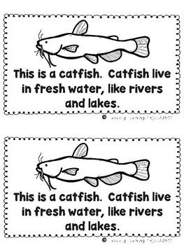 Fish Mega Bundle (Fish Fact Poster, Emergent Reader, Lap Book, Vocabulary Cards)