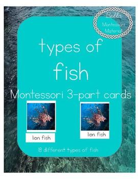 Fish - Montessori 3-Part Cards