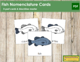 Fish Nomenclature Cards